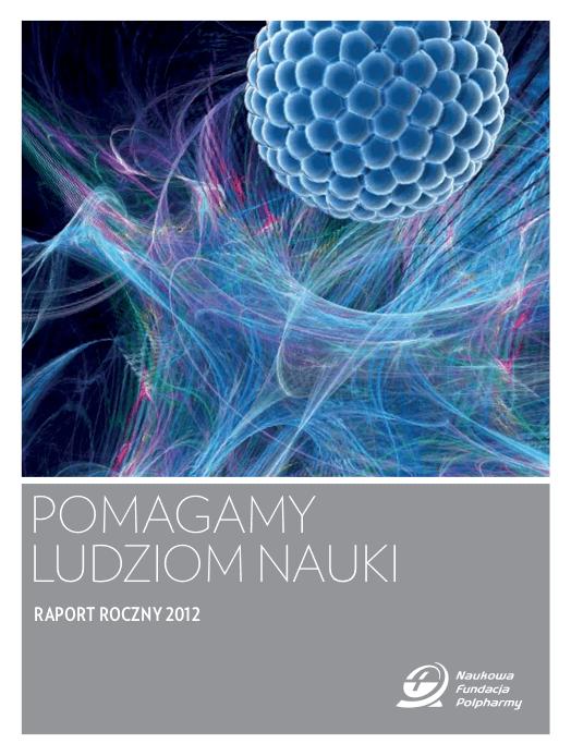 Raport roczny 2012 okładka