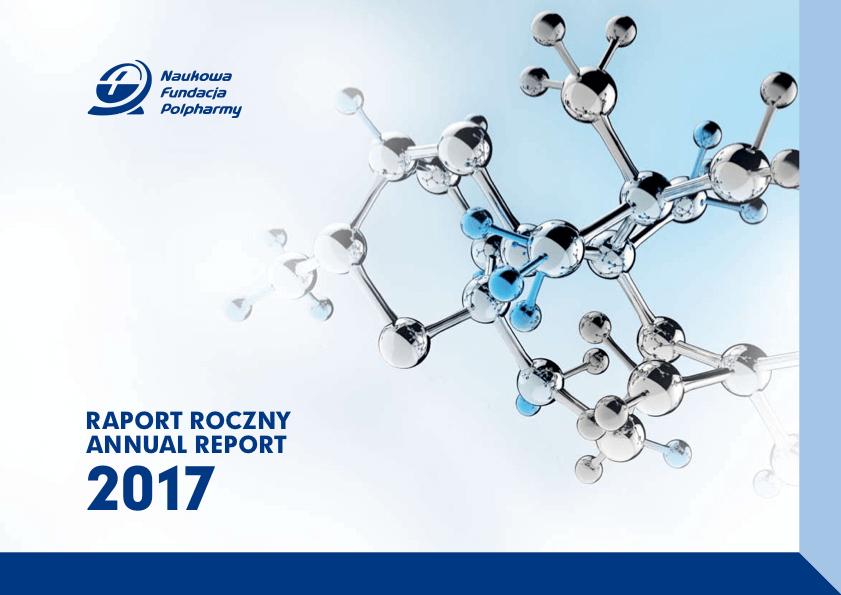 Raport roczny 2017 okładka