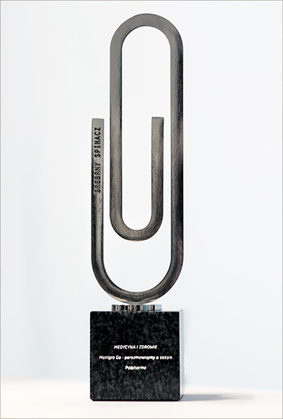 Srebrny Spinacz dla Maxigry Go statuetka