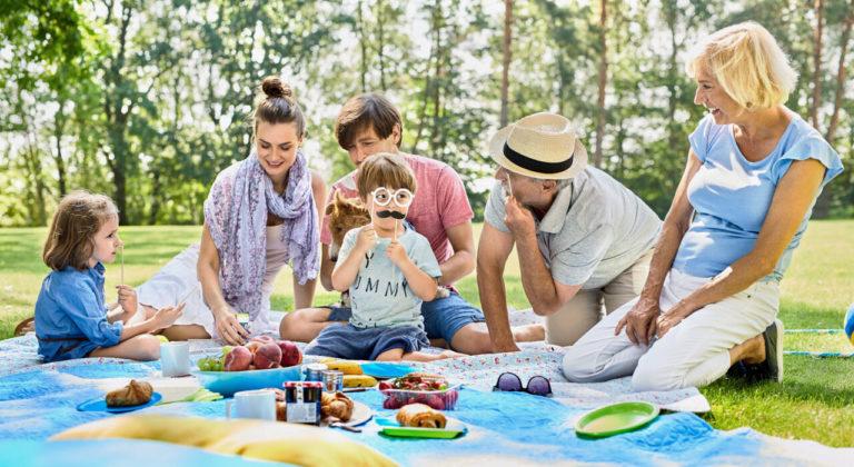 Rodzina na pikniku na trawie