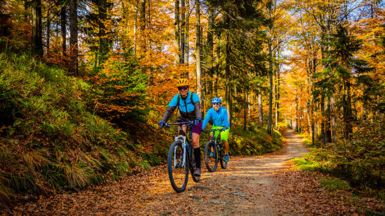 Two people riding bikes in the woods