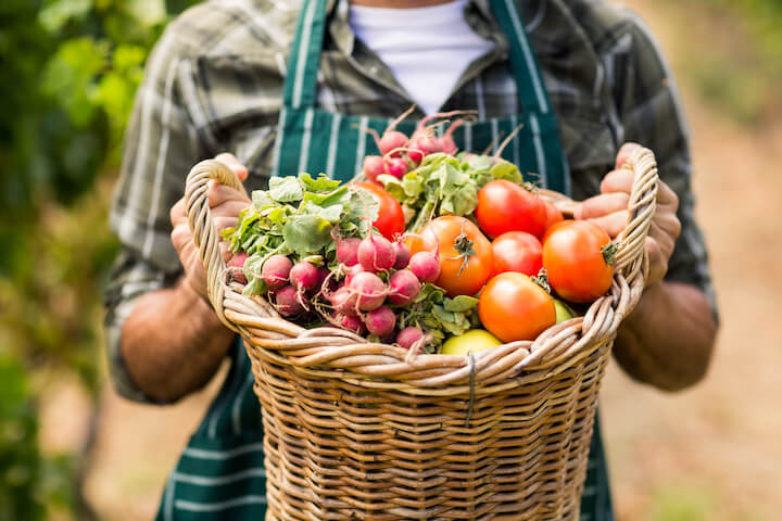 Mid section of farmer holding a basket of vegetables in the vineyard