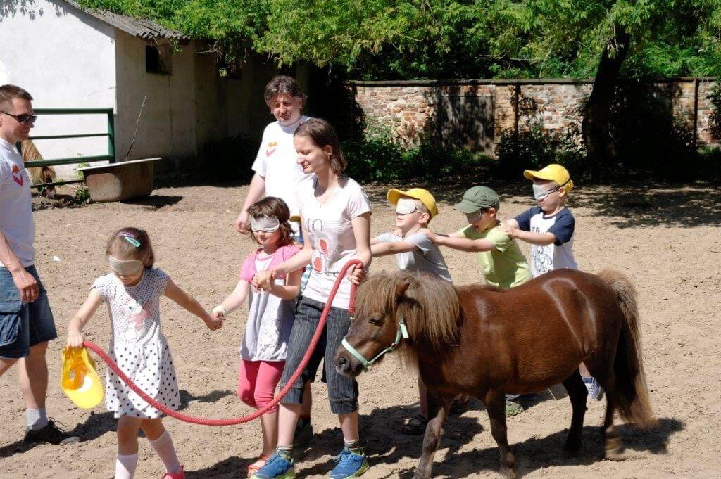 Children playing with a pony
