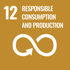 Sustainable development Responsible consumption and production icon