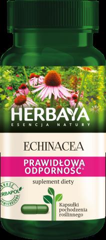 Herbaya Echinacea prawidłowa odporność x 60 kaps.